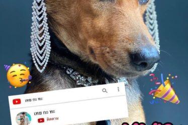 หมูกระทะ สุนัข celeb ที่ดาราชื่นชอบ